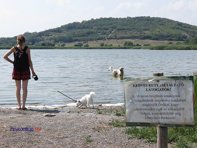 Tihanyi-kutyas-strand-balatontipp-hu-gyorffyarpad2