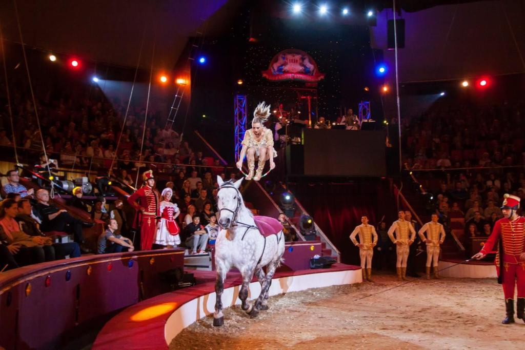 cirkusz - tabitha