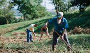 Ötezer családon segített az Élelmi-szerlavina program