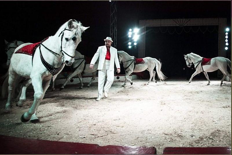 vágtató ló
