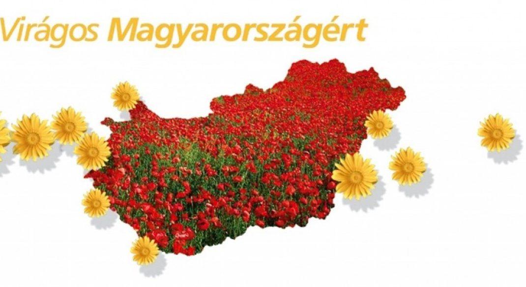 Veszprém és Lajoskomárom kapta idén a Virágos Magyarország fődíját