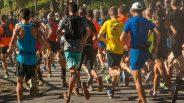 Futóversenyek miatt változik egyes BKK-járatok közlekedése vasárnap