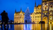 Idén először ezüstfenyő az ország karácsonyfája