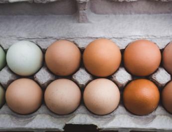Nagyot drágul a tojás húsvét előtt