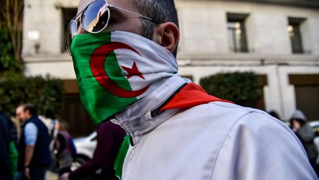 Algeria megmozdulasok
