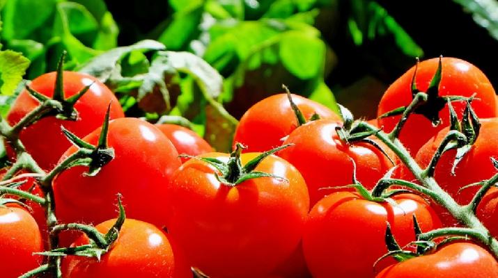 Elszálltak a zöldségárak