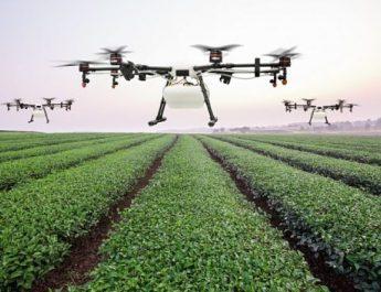 Drónok az agráriumban
