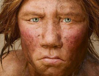 neandervölgyi-kihalása
