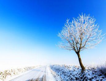 tél Zala megye
